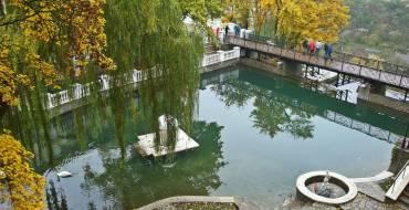 Сквер «Лебедине озеро»